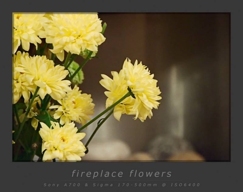 Fireplace Flowers