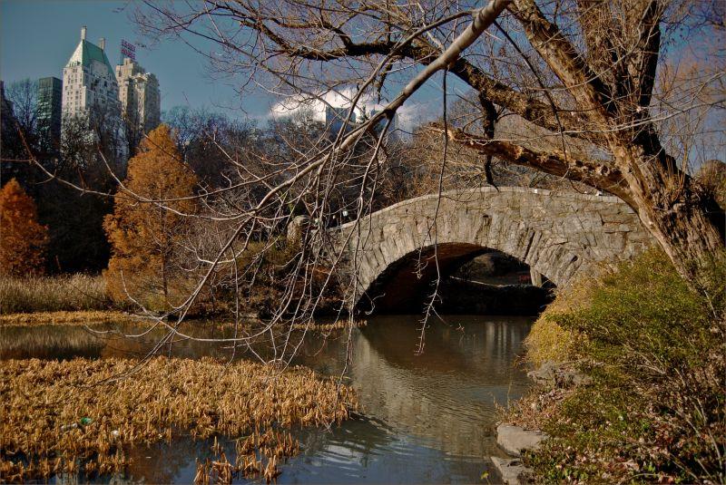 Central Park Bridege