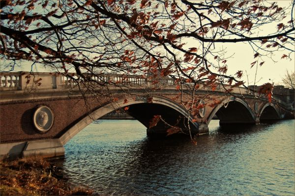 bridge over the charles river