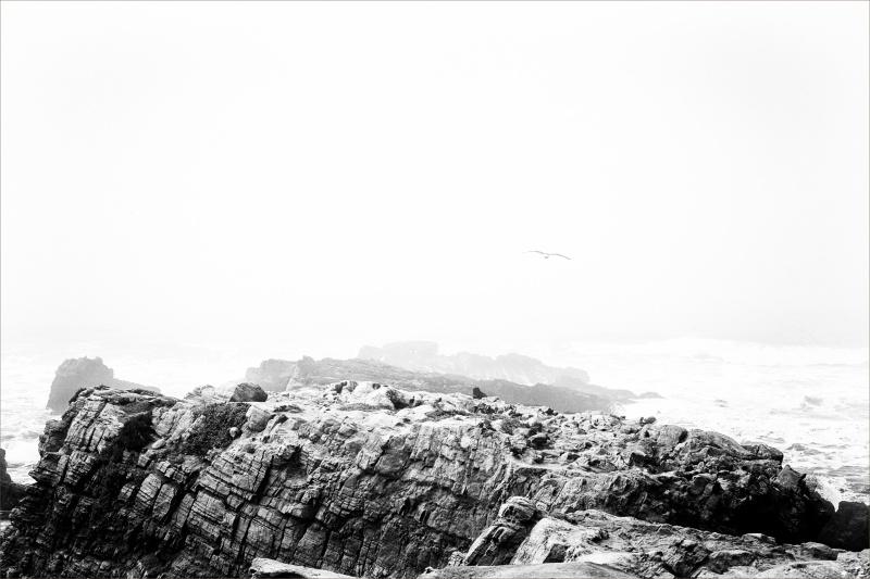 La mar