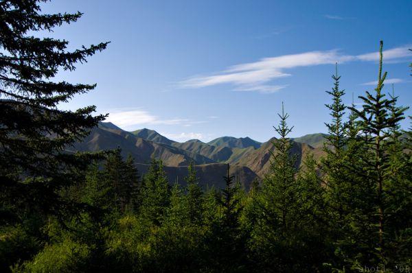Taigan landscape