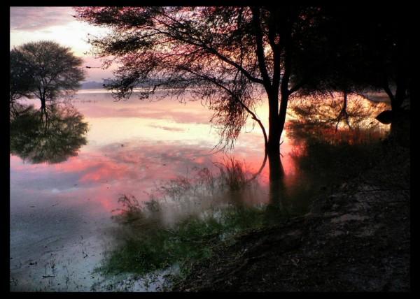 Early Morning at the lake