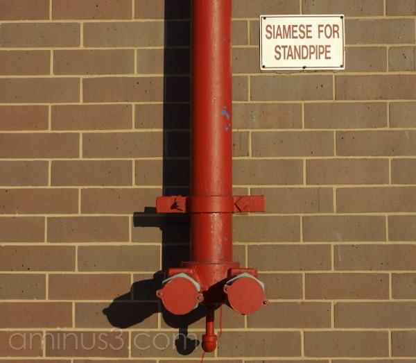 Siamese for standpipe