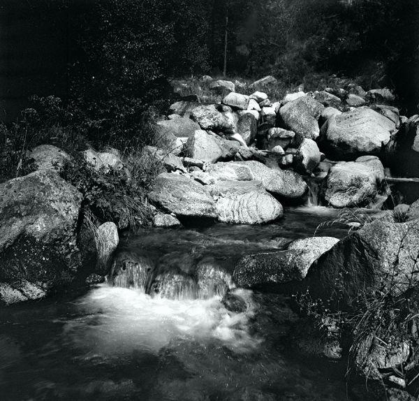 Petit riu de muntanya