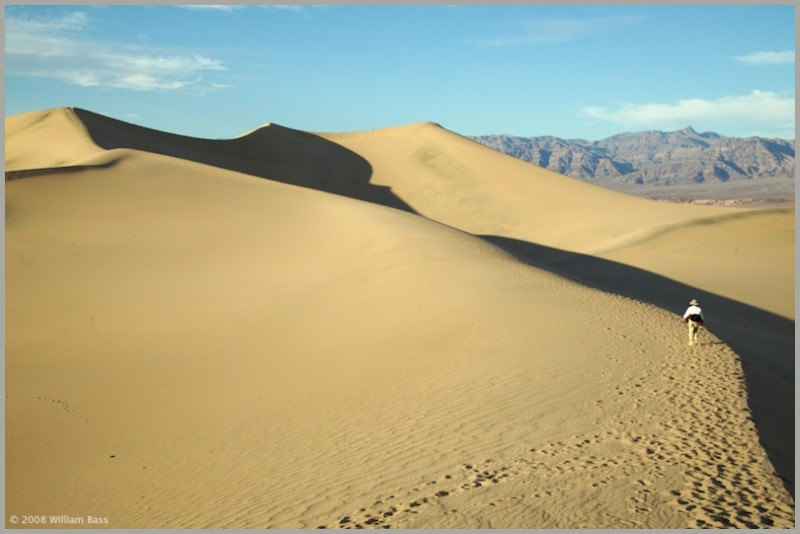 Sand Dune, Death Valley National Park