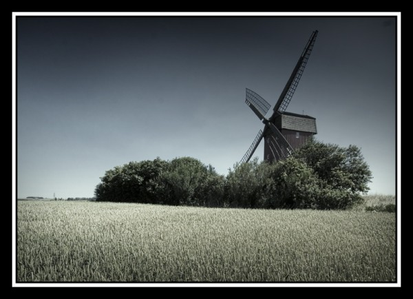 Mill in wheat
