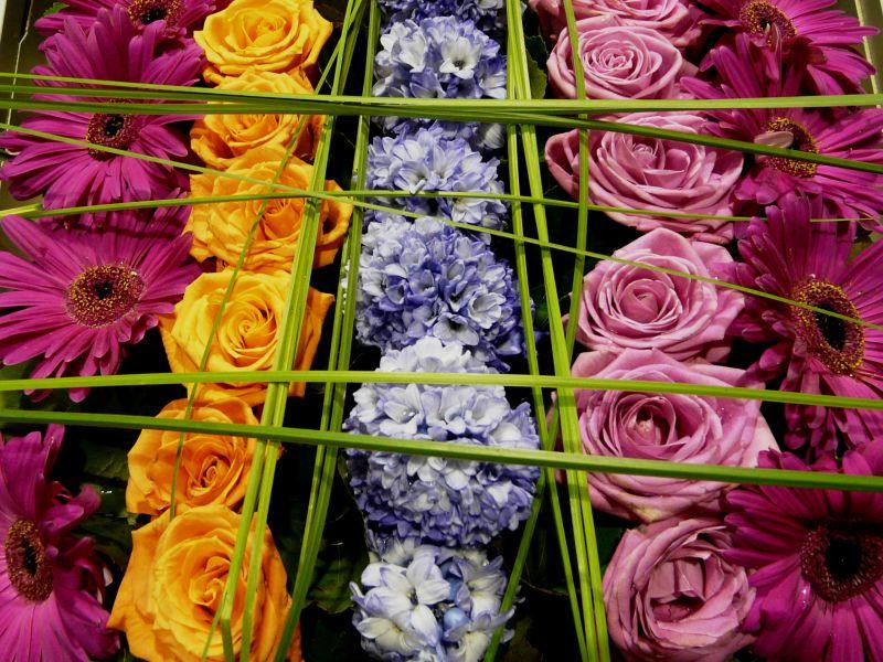Bouquet de lignes