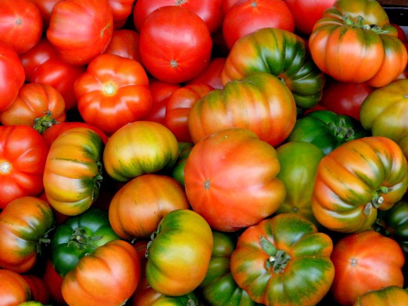 Une petite salade de tomates pour midi ?