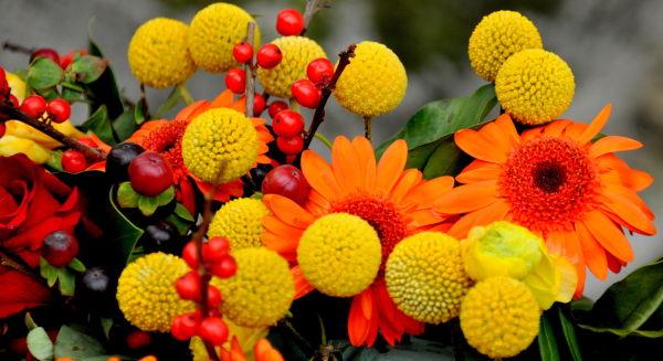 Jaune et orange
