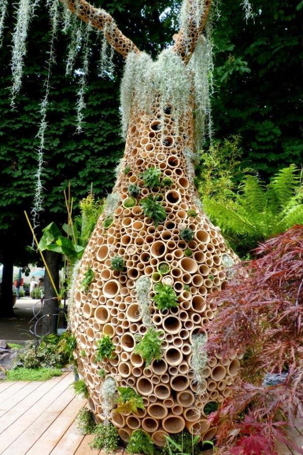 Baobab bambous