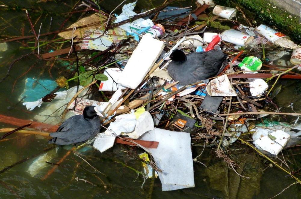 Recyclage  ... sur les canaux d'Amsterdam