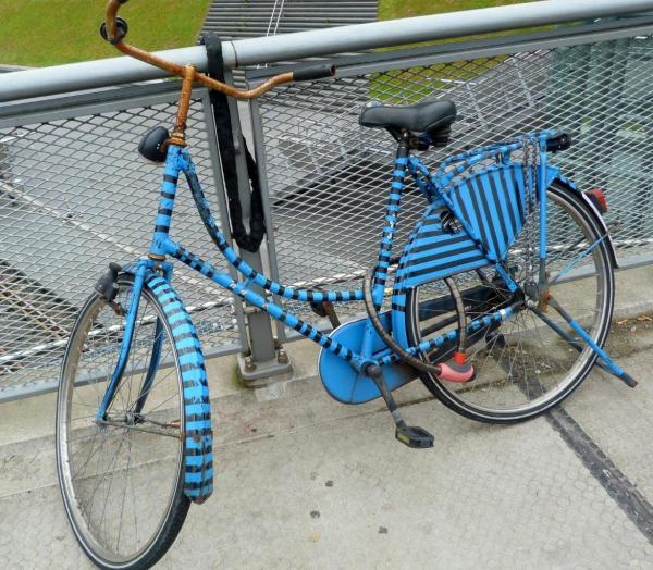 Vélo tigre bleu amsteldamois