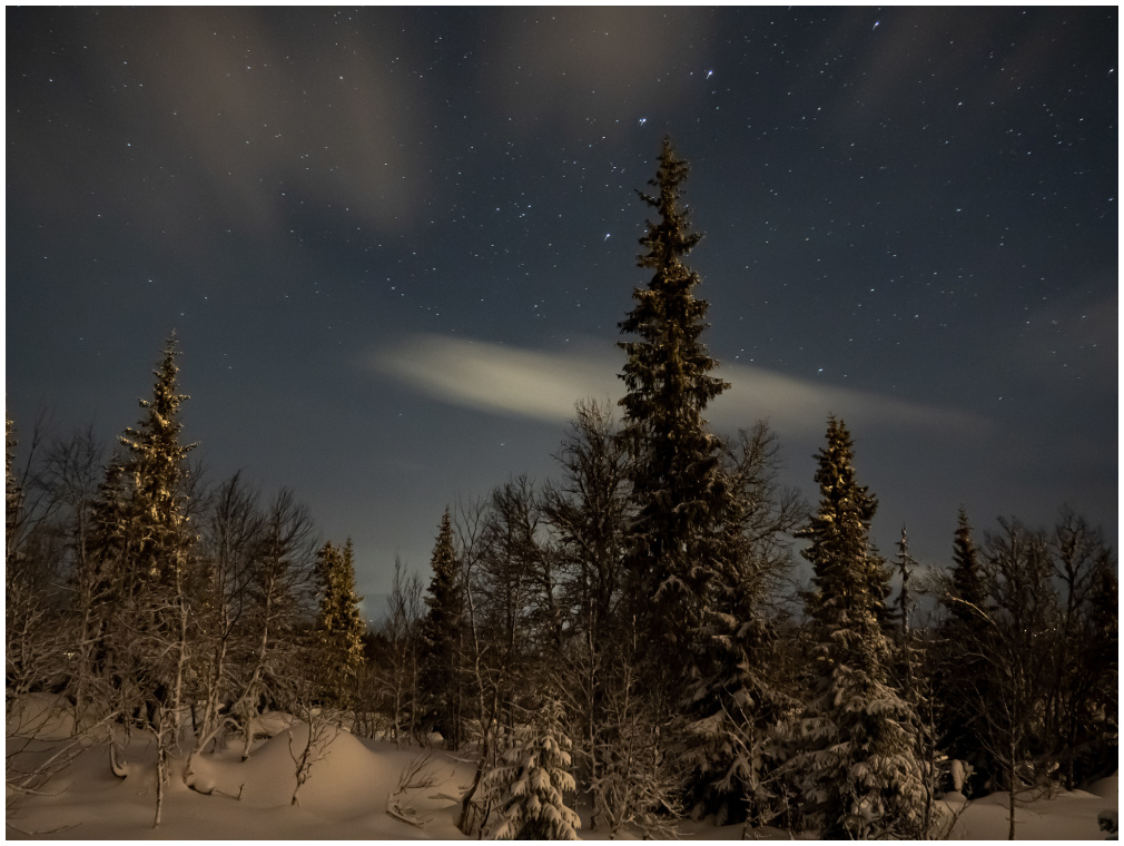 Stars and Snow.