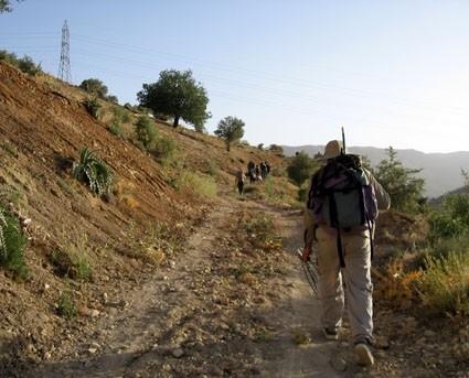 اردوی آروی در سپیدان
