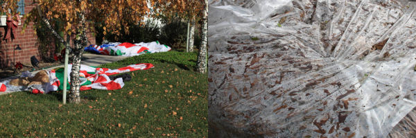 aftermath, leaves, plastic, Christmas ornaments
