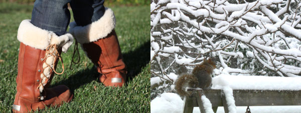 furry, boots, squirrel, snow
