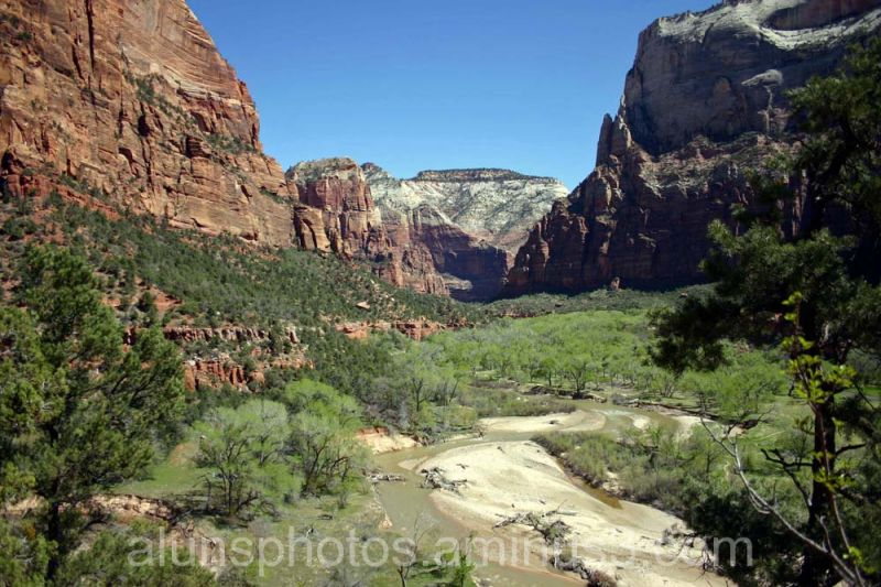 The Zion view