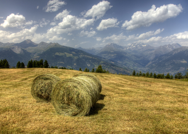 Hay bales and mountains