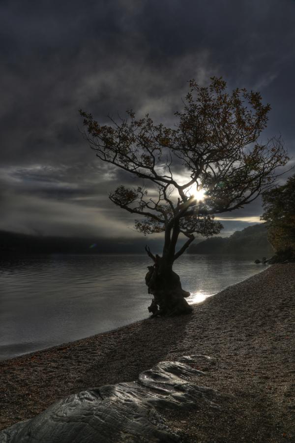 Loch Lomond Morning 2