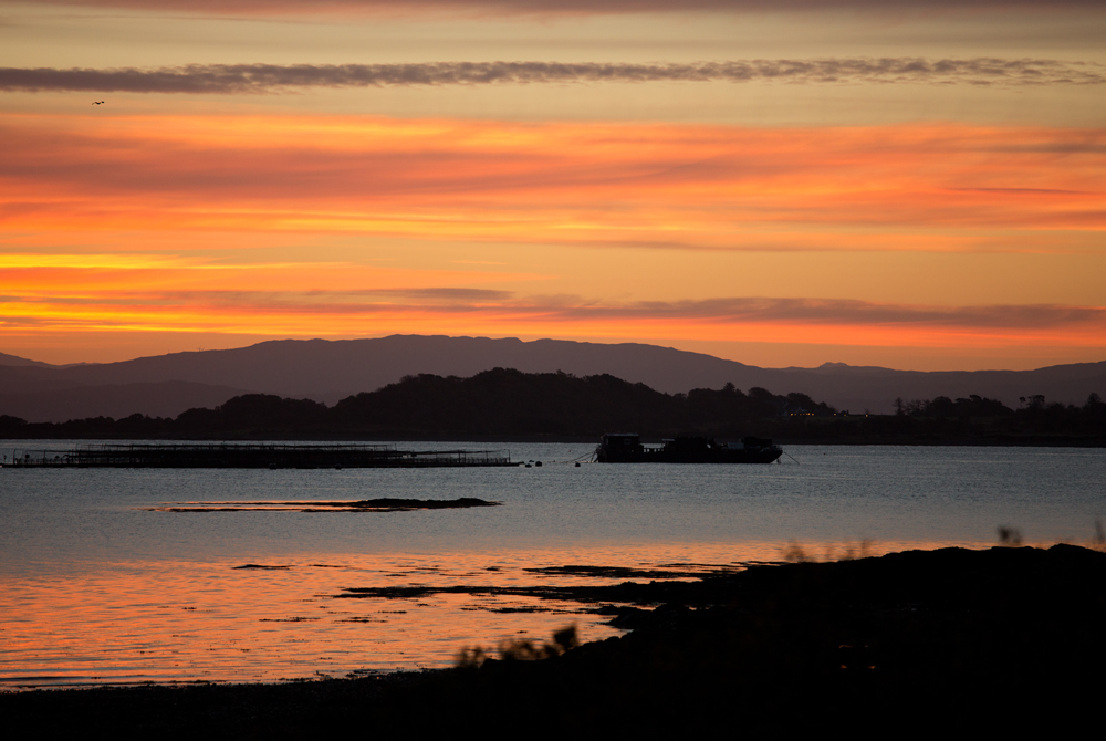 Sunrise on Mull