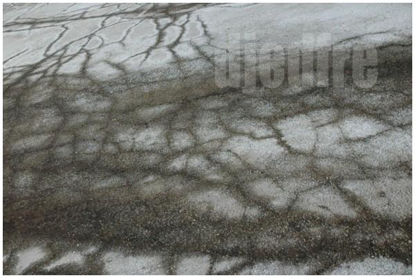 frost cracks