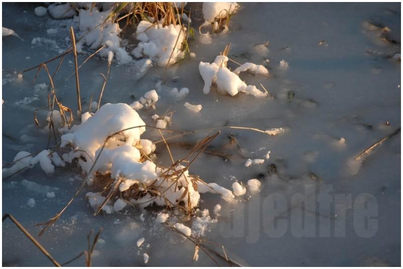 icy dusk