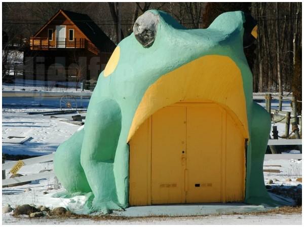 fontana frog
