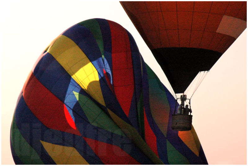 lisle balloons