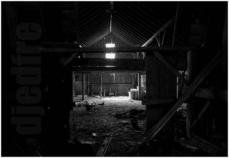 djedfre hayless loft