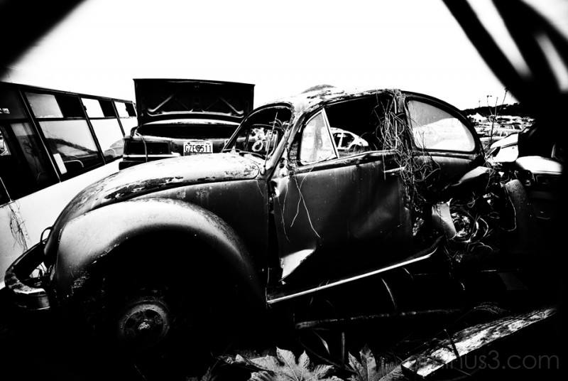 Volkswagen Beetle that met its fate.