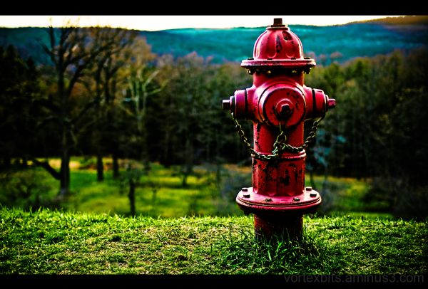 Fire hydrant at Hyde Park, New York