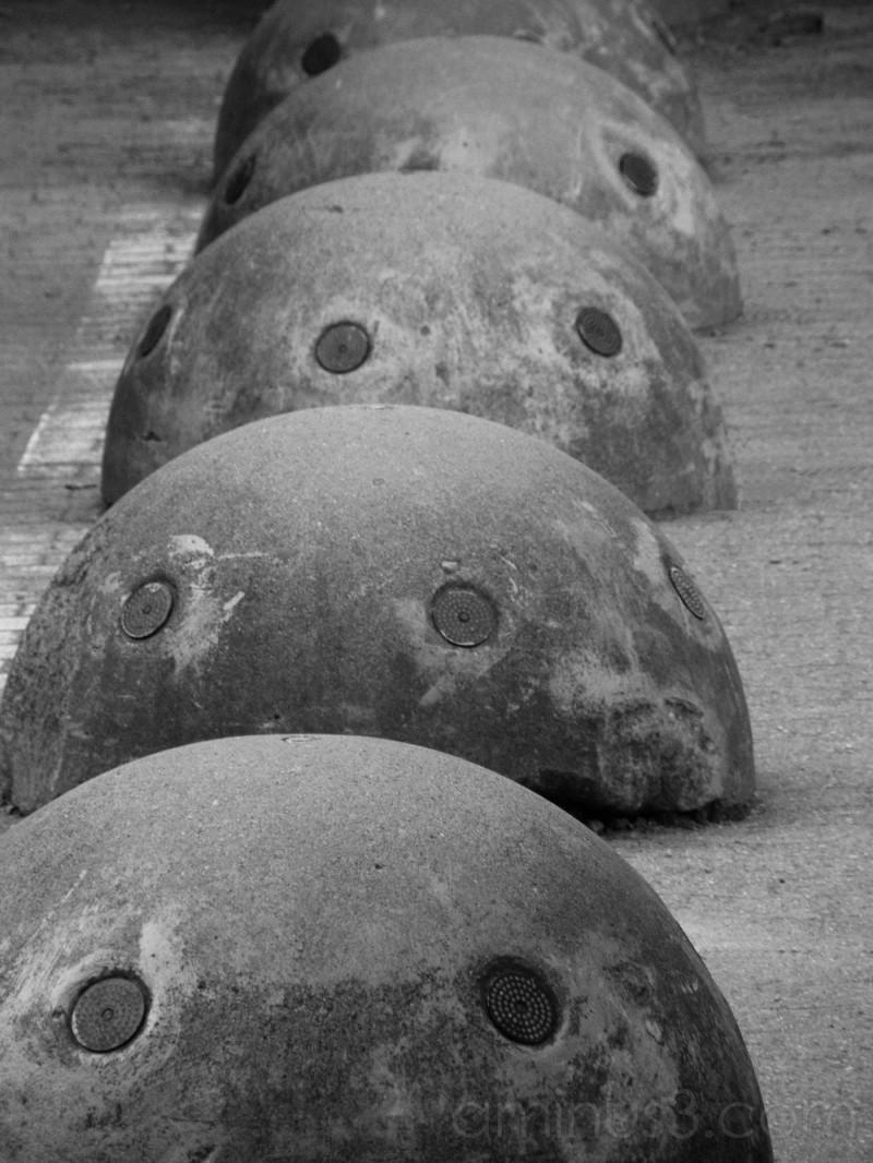 Concrete Turtles