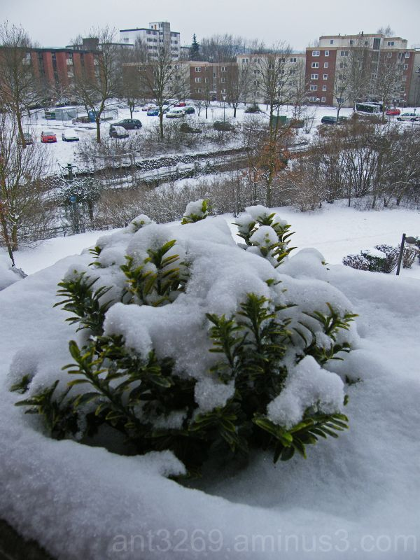 Bielefeld Snow