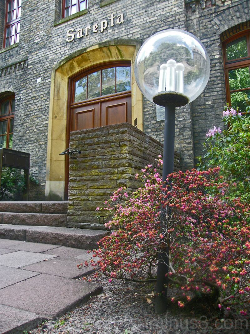 Lamp and steps
