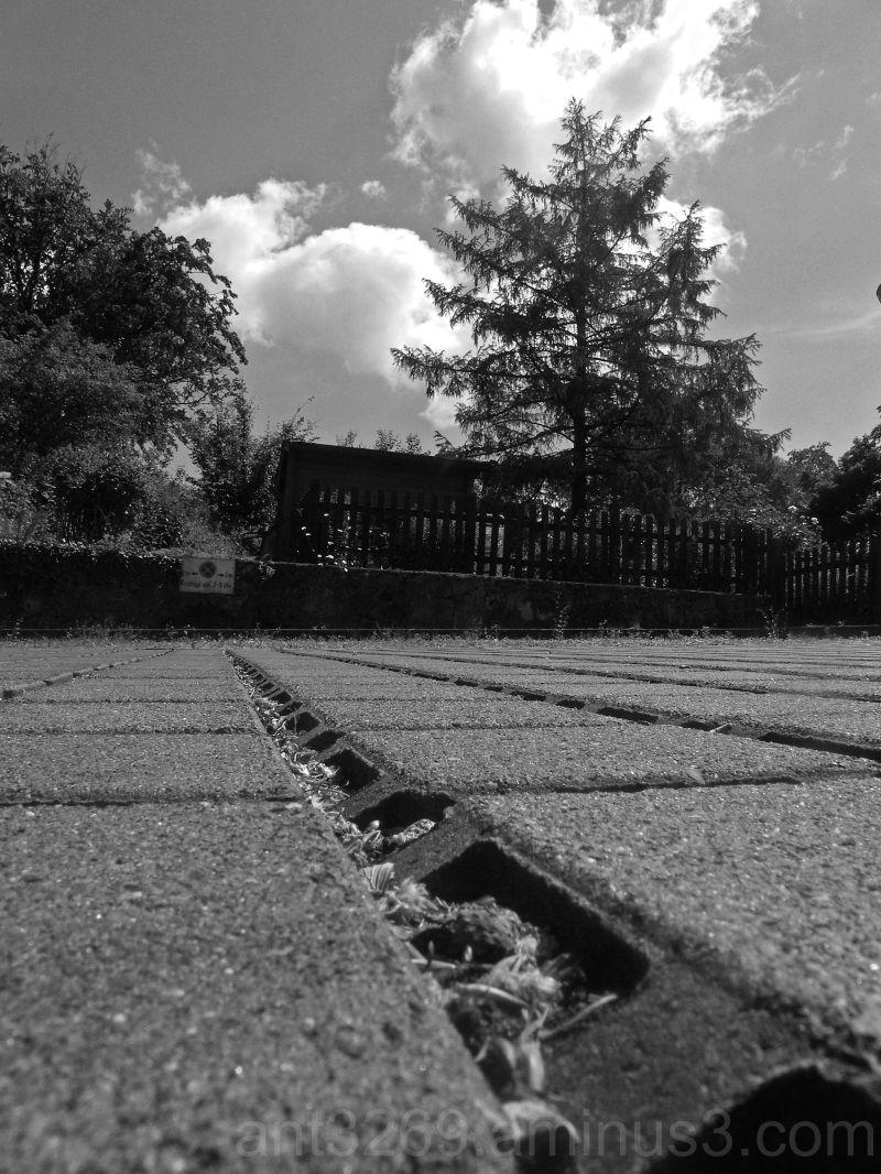 Black and white bricks #3
