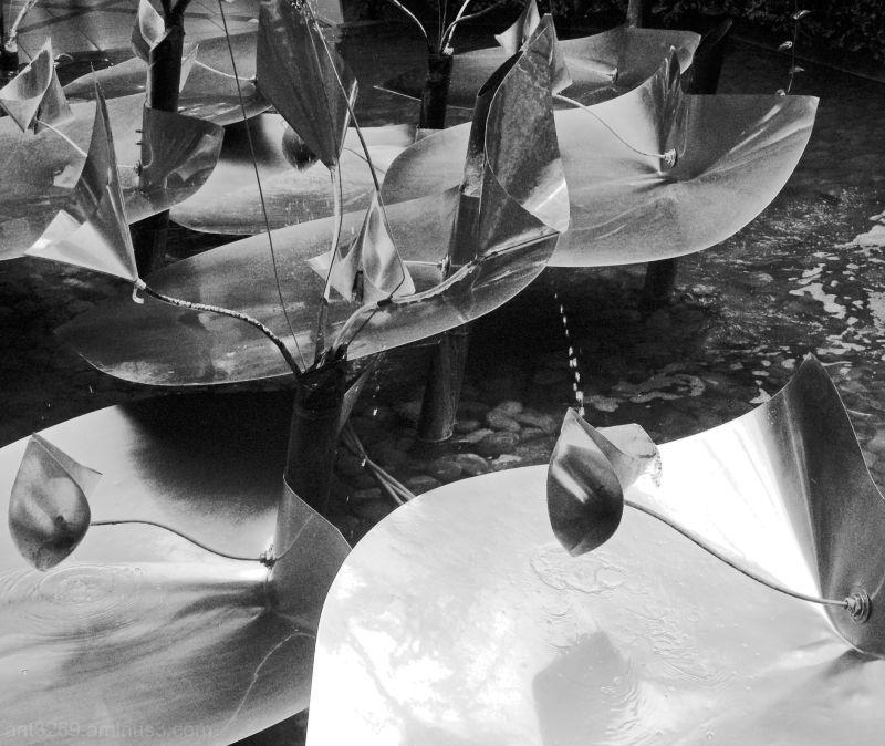 Water sculptures