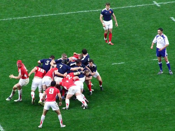 Rugby The professionals #3