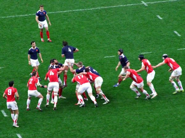 Rugby The Professionals #9