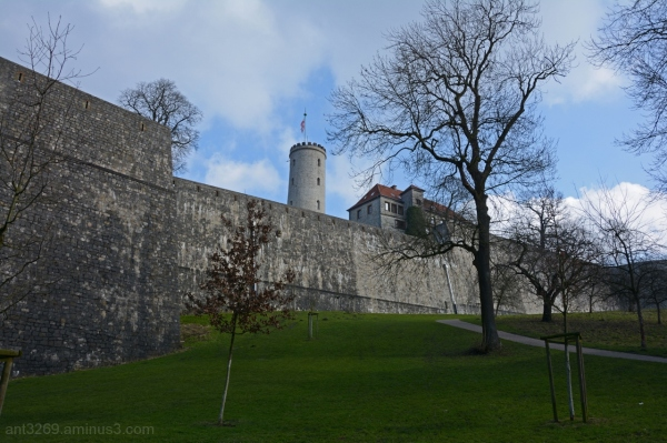 Castle walls #1