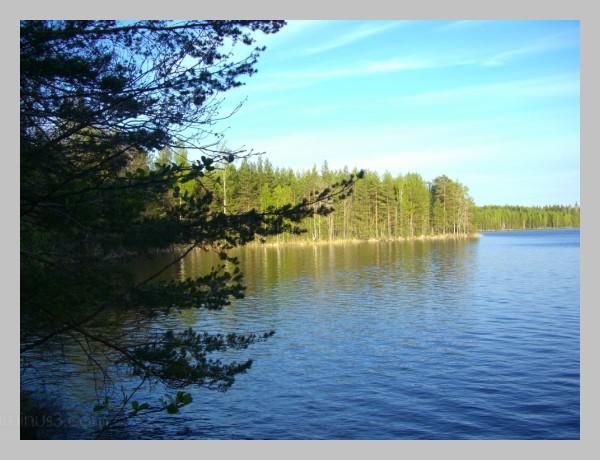 järvi