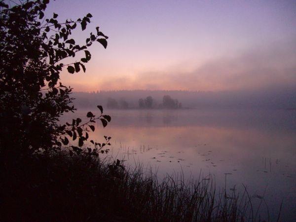 järvi sumussa
