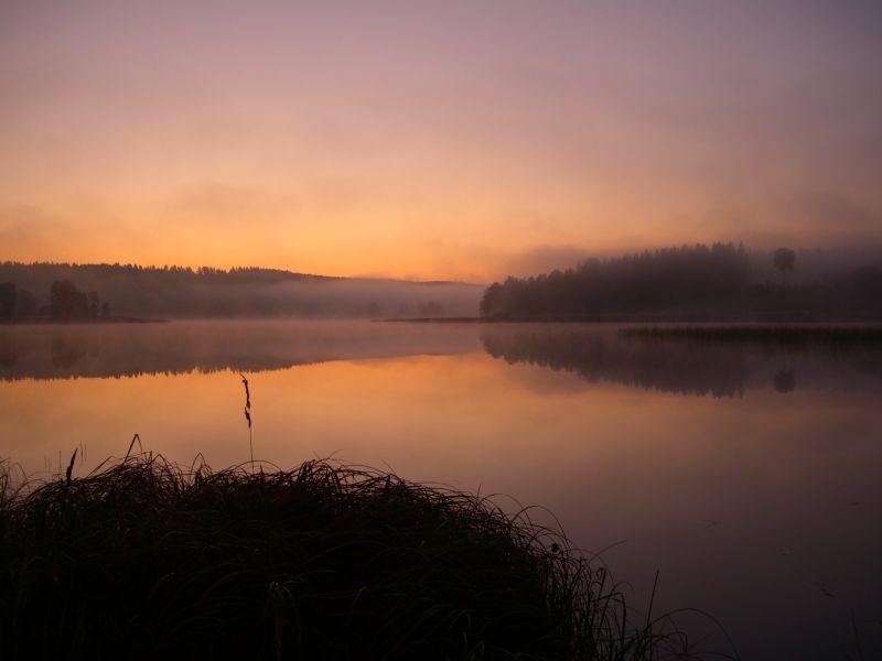 usvainen järvi