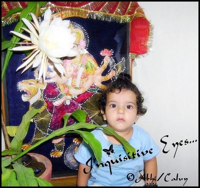 Beautiful eyes,cute kid,innocence