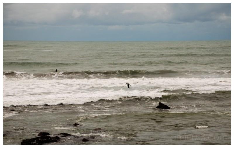 Spot the surfer
