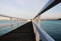 Waitemata harbour