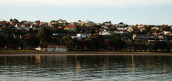 Okahu Bay in the early morning