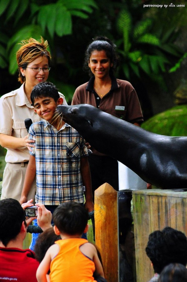 Boy getting disgusted at sealion kissing him