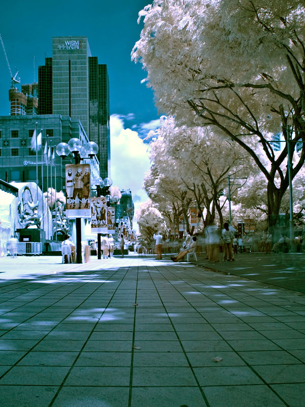 Orchard road in IR
