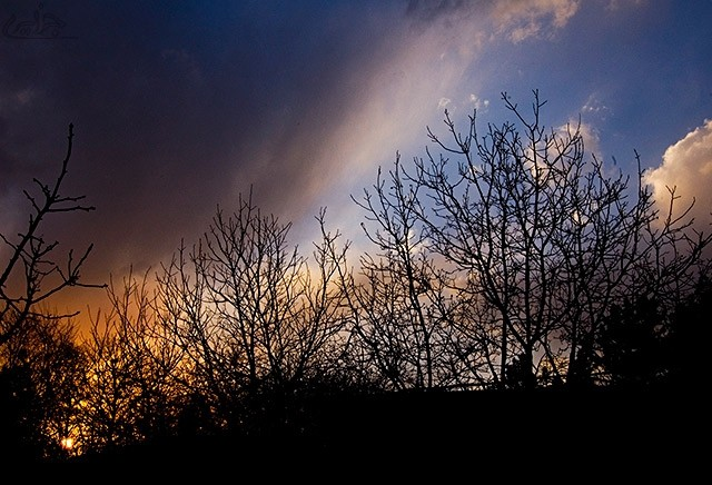 fire , sunset , landscape
