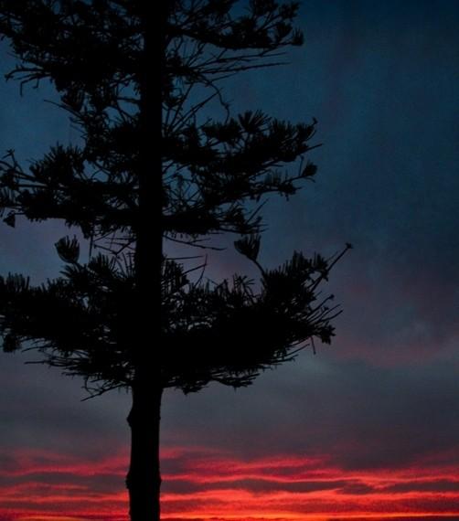 sunset california photography gopikrish